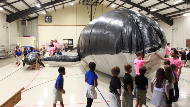 Science ambassadors from Jackson State Community College took a life-sized blue whale and her calf on a visit to Malesus Elementary School Monday.