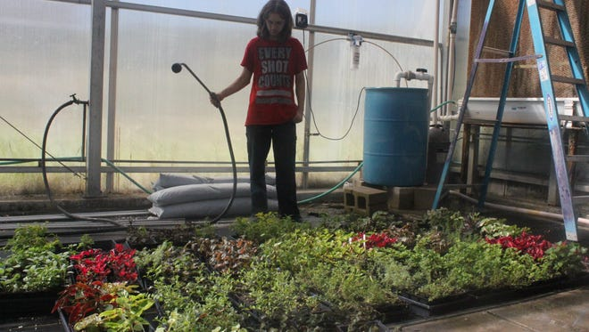 Special education students at Carlsbad High School work to restore a campus greenhouse that will be used for horticulture classes, Sept. 20 at Carlsbad High School.