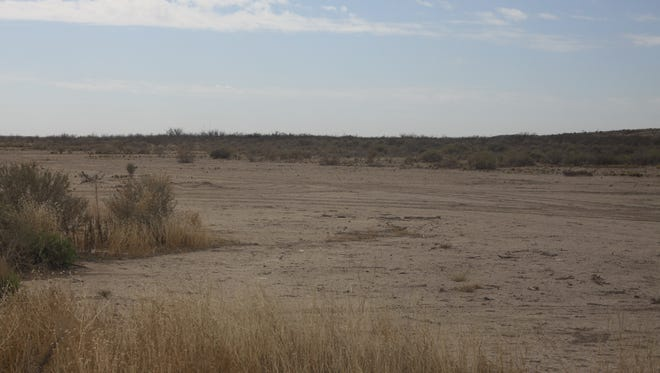 An area near the Pecos River in southern Eddy County awaiting reseeding of native grass after invasive bush species were eradicated, March 13, 2018 at Red Bluff