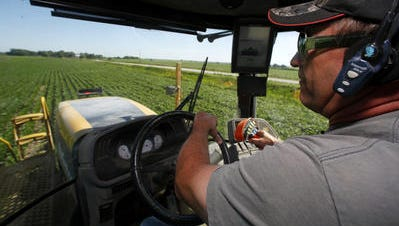 Danny Dammann drives through a soybean field while spraying in Montgomery County on July 3, 2014. A new Iowa Poll shows that nearly a quarter of Iowa adults are actively farming now or have done so at some point in their lives.