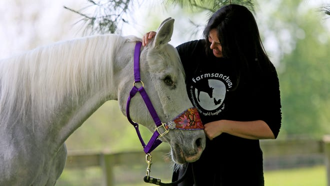 Tracey Stewart, wife of comedian Jon Stewart, shares a moment with horse, Lily, which she adopted from Omega Horse Rescue in Kennett Square, Pennsylvania, on Wednesday. The Stewarts have an animal sanctuary at their New Jersey farm.
