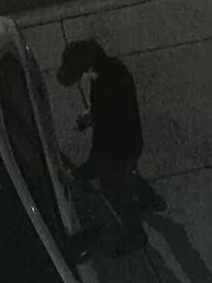 Surprise police are looking for this person, who they say broke into several vehicles and stole property on Jan. 8, 2017.