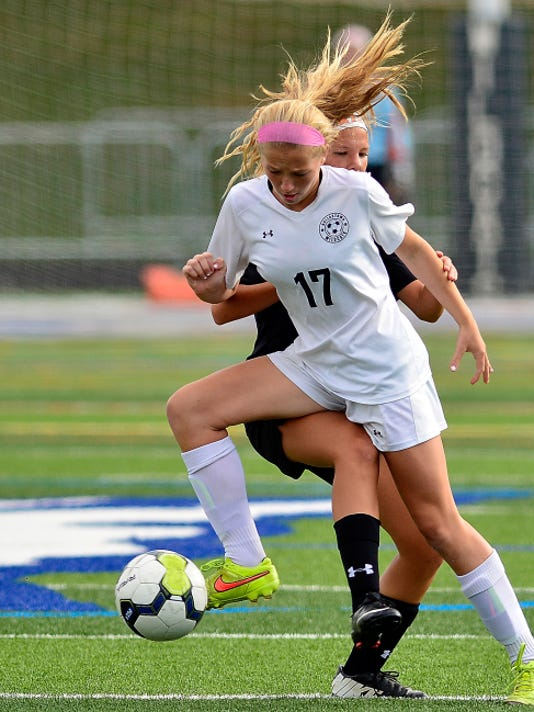 Dallastown's Hannah Larson (17) steals the ball away from Central York's Zaria Emswiler on Tuesday.