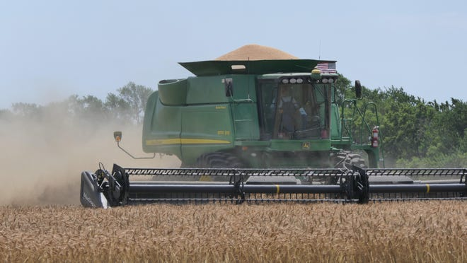 Wheat is harvested at Came Farms in Salina.
