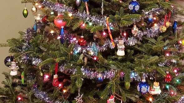 Once the decorations are removed, a real Christmas tree can be recycled into craft projects or they can provide shelter to local fish and wildlife as habitat in ponds, lakes, or even a back yard. Photo courtesy Missouri Department of Conservation
