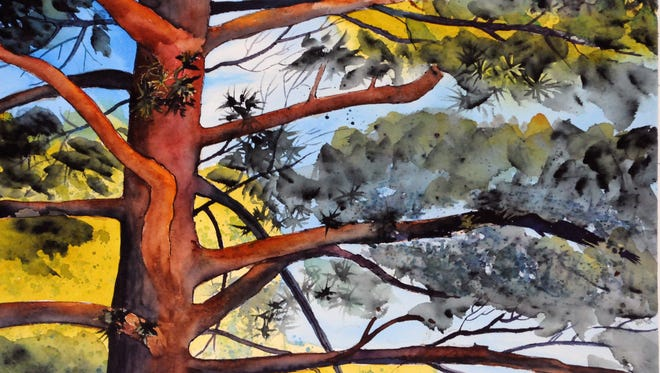 """In Celebration of Trees"" – a collection of paintings by Wisconsin artist Jean Tobin will be on display April 6 – 27 at UW-Sheboygan."