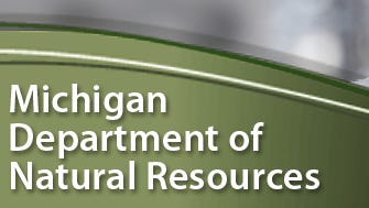 Video footage of a cougar in Mackinac County has officially been confirmed by the DNR's Wildlife Division.