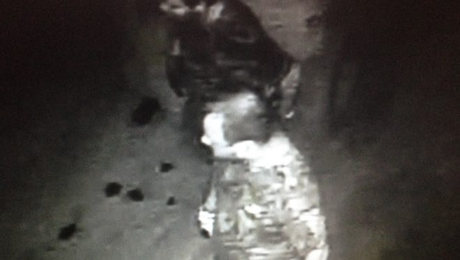 Springfield Police have released security footage from the burglary.