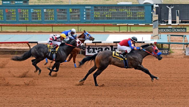 Flash Moonfire winning his Mountain Top Futurity trial with the fastest-qualifying time.