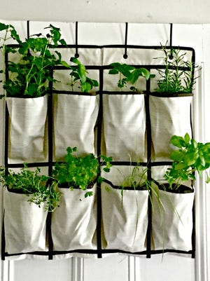 A canvas shoe holder can easilybe converted into a vertical gardening space.