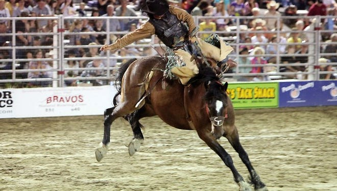 Cowtown Rodeo opened its season with a tragic incident as a horse died after running into a fence.The handling of the injured horse has drawn criticism from an animal rights group.