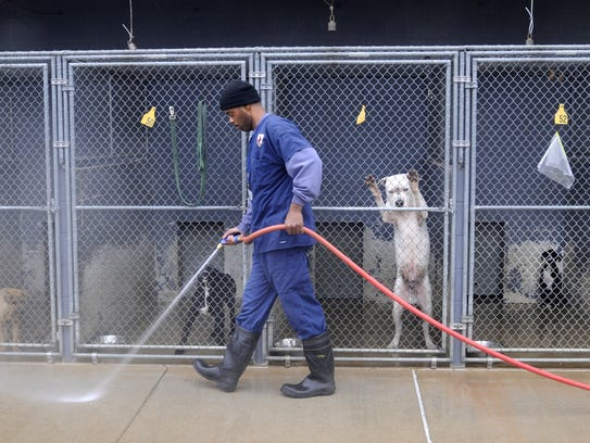 FILE PHOTO - The Caddo Animal Control office in Shreveport.