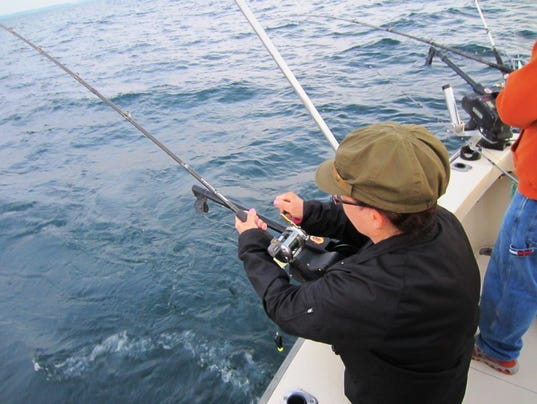 Dnr comments sought on lake michigan plan for Michigan dnr fishing guide