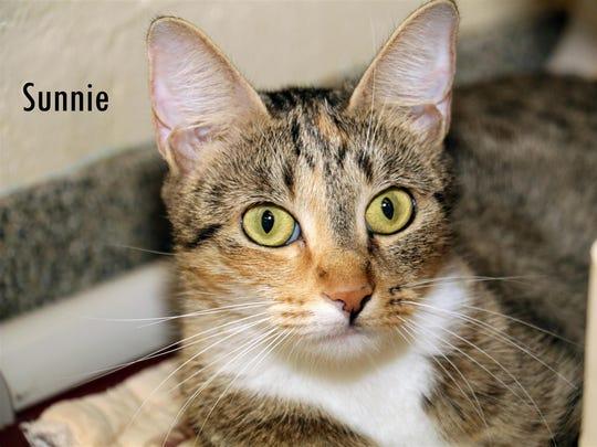 Sunnie #676371