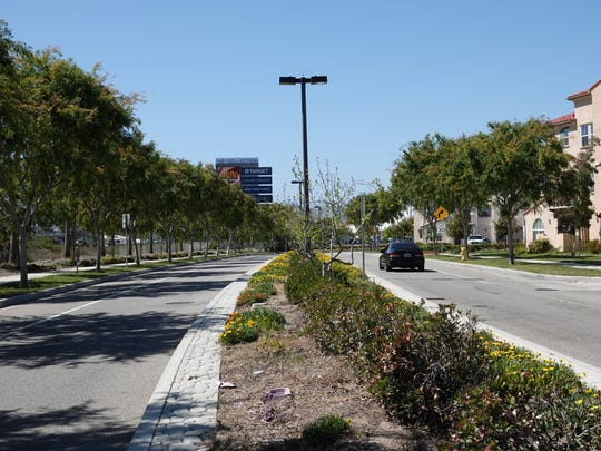Looking down Riverpark Boulevard toward The Collection