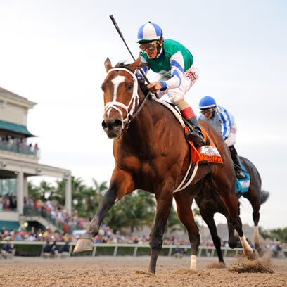 Materiality won Saturday's Florida Derby at Gulfstream