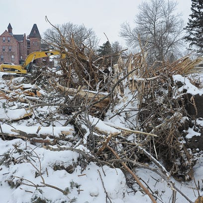 Trees that have been removed are piled up on the property