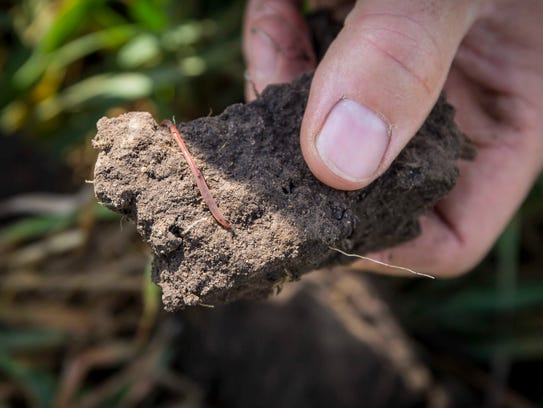 Earl Canfield shows a chunk of dirt from an oat field