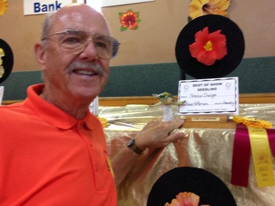Frank Heffernan is pictured with his prize-winning hibiscus seedling Neela's Orange at last year's Hibiscus Show & Plant Sale.