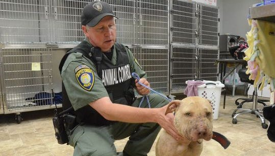Animal Control Officer Mike Ehart with Daisy, one of the dogs seized in a raid Wednesday.