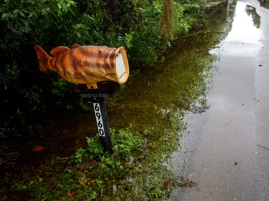 A fish mailbox rises above the flooding caused by heavy rains associated with Tropical Storm Emily on Bottlebrush Lane in North Naples on Tuesday, Aug. 1, 2017.