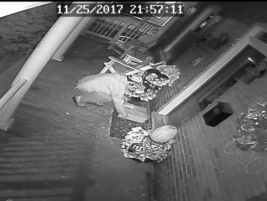CPO-SUB-package thief-120117