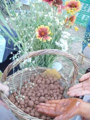 Making seed balls is an easy and fun way to plant flowers.