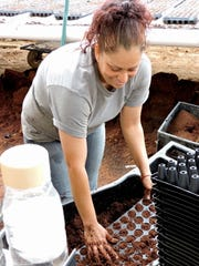 Veronica Sotelo of Columbus, NM, prepares a container