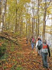 Students of Smoky Mountain Field School hike in the