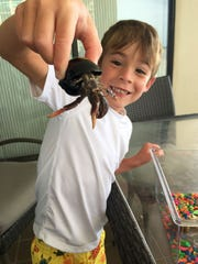 Tucker Lamkin and Big Guy, the Hermit Crab