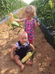 Charles Barnhart and Elizabeth Simpson get a look at the sweet corn in Barnhart's dad's field on June 29, 2017.