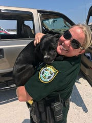 The Santa Rosa County Sheriff's Office helped a dog out of a hot car in Navarre May 19, 2018.