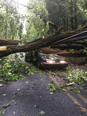A vehicle operated by Daron Shellehamer, 48, Richland, that was struck by a falling tree at 5:05 p.m. May 22 on Old Mine Road in West Cornwall Township. Shellehamer stopped for another tree that had fallen across the roadway when the tree fell onto his vehicle, police said.