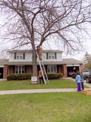De Pere Fire Capt. Ed Balcer holds the ladder as firefighter Tom Nelson rescues Sidney the cat from a tree on the city's southeast side on Tuesday.