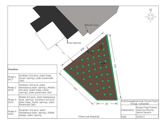 A design showing proposed layout for the food forest