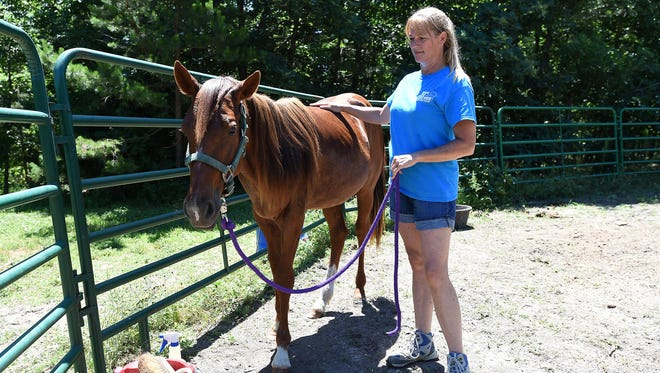 Jo Ann Joseph checks Clyde, a horse she rescued six months ago from near starvation.
