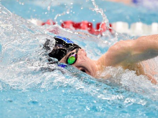 Dallastown's Jacob Stoner swims the 100-yard freestyle