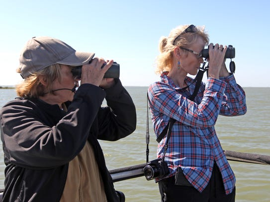 Bird watching and wildlife photography generates millions