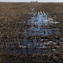 Buffer strips along streams like this are among the ways Iowa farmers combat erosion.