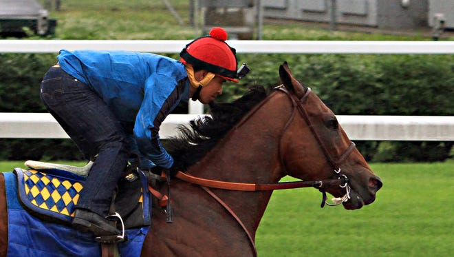 Triple Crown hopeful American Pharoah, ridden by jockey Martin Garcia, powers through his final timed workout in a steady, light rain at Churchill Downs in Louisville, Ky., Monday, June 1, 2015. The Kentucky Derby and Preakness Stakes winner will head to New York for Saturday's Belmont Stakes on Tuesday.