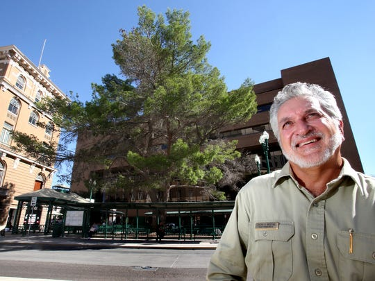 El Pasoan Oscar Mestas, a regional urban forester, has been named Texas Arborist of the Year. He helped preserve the giant Aleppo pine behind him. The tree is between the Federal Courthouse and the Federal Building in  Downtown El Paso. Planted in the 1960s, it is the tallest tree of its kind in Texas.