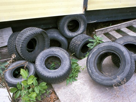 Tires lying around a yard or by a shed can become breeding