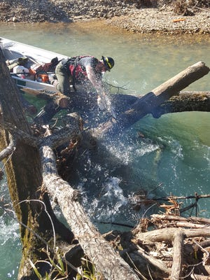 Park ranger aboard a jetboat carefully cuts away tree branches that could easily have trapped inexperienced paddlers.