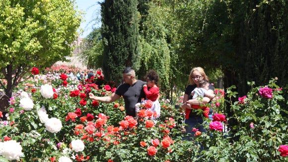 Visitors stroll through the El Paso Municipal Rose Garden on Saturday in Central El Paso.