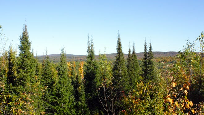 A scenic overlook provides a glimpse of the Penokee Mountains along the North Country Trail near Mellen in Ashland County.