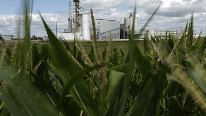 In this 2013 file photo, an ethanol plant stands next to a cornfield near Nevada, Iowa.