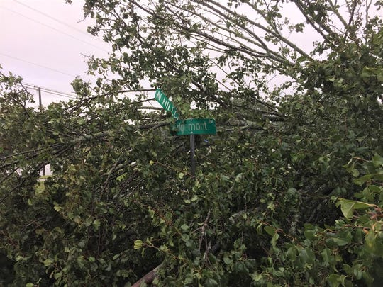Pickens County News reader Chris Carroll submitted several pictures of day-after storm damage around Liberty, including this shot at the intersection of Hillcrest Street and Edgemont Avenue.