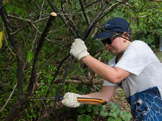 Alex Cutrone, of Naples, helps remove overgrown and invasive plants along the trails at Lovers Key State Park in Bonita Springs, Florida on Saturday, Sept. 24, 2016. Lovers Key State Park Rangers and volunteers helped maintain the trails as a part of National Public Lands Day, a nationwide event established by the National Environmental Educational Foundation (NEEF) to celebrate the public lands that make up 30% of the United States.