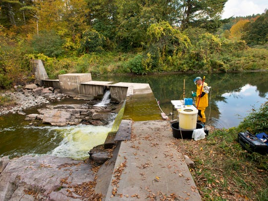 Joel Flewelling, a scientist with the Vermont Department of Fish and Wildlife, applies lampricide to Lewis Creek in Charlotte on Tuesday.