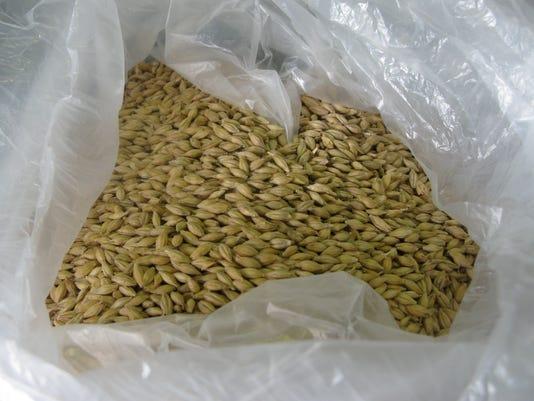 -BGMBrd_04-25-2014_Daily_1_A011~~2014~04~24~IMG_Dry_grain_1_1_A075H9SK_L4054.jpg